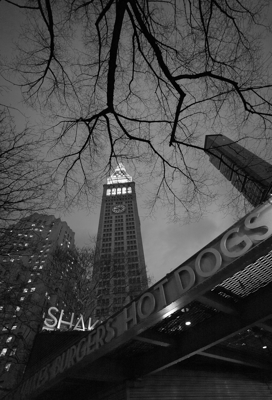 Madison Square and the Shake Shack