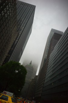 Park Avenue in the Fog