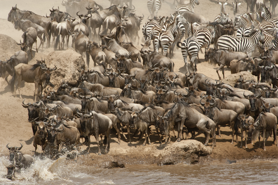 Crossing Mara River