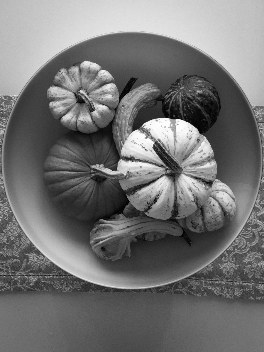 Gourds and Venini